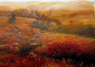 Vörös Mező